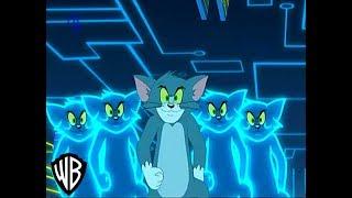 El Show De Tom y Jerry | Dilema Digital | En Español ( Parte 2/2 )