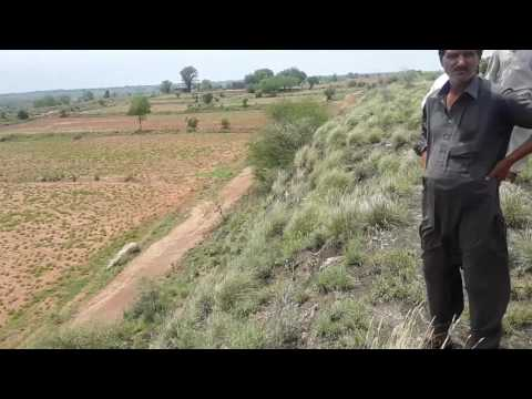 Plot for sale - Malik Property dealers - Fateh Jang Lund Gran Village  Pakistan