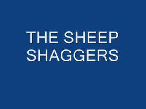sheep shaggers