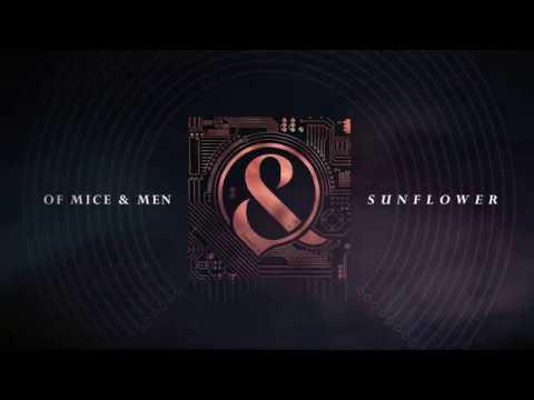 Of Mice & Men - Sunflower