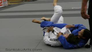 WI Women's Brazilian Jiu-Jitsu Marion Reneau trianlge mounted submission