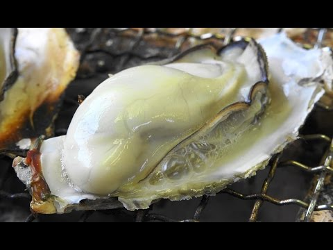 """【牡蠣小屋】 豊前海一粒かき  """" Oysters BBQ~2016春 """""""