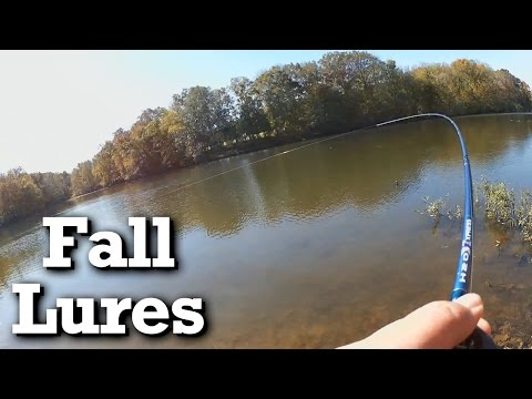 Catching a striped bass from shore - Fall fishing with a jerkbait and crankbaits