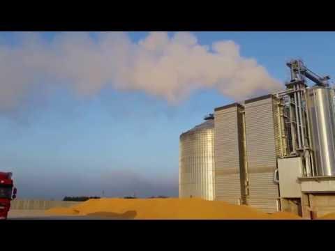 Strahl grain dryer