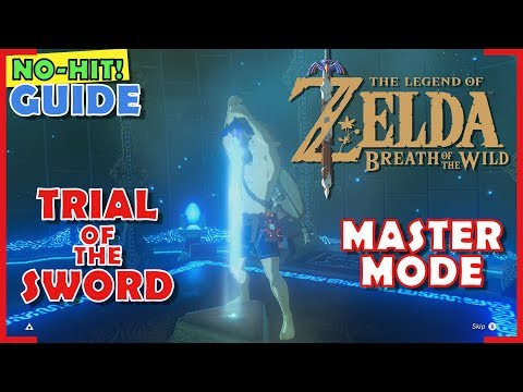 No-Hit! Trial of the Sword GUIDE | Master Mode | Beginning Trials (Walkthrough)