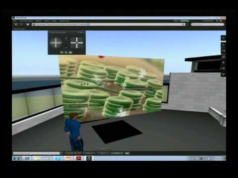 Teaching Biology in Second Life