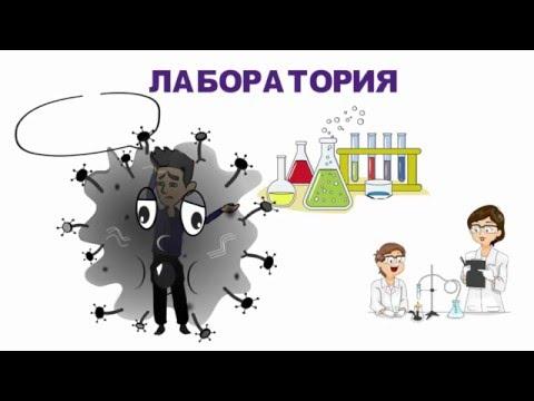 Гепатит С – характеристика вируса, как передается вирусная