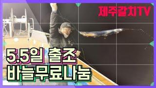 #갈치낚시 #제주갈치낚시 5월5일 제주조황/무료나눔