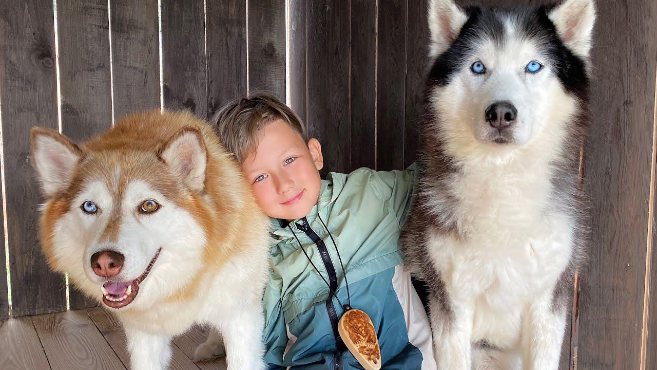 КУПИТЕ мне эту Собаку - Новые приключения на Алтае 2021