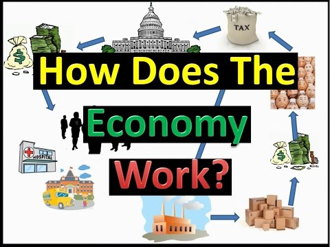 How Does The Economy Work?