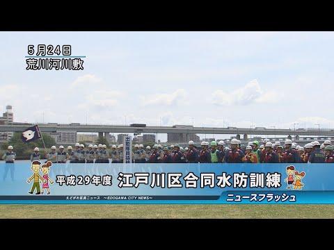 平成29年度 江戸川区合同水防訓練