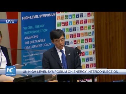 Global Energy Interconnection: Advancing the Sustainable Development Goals