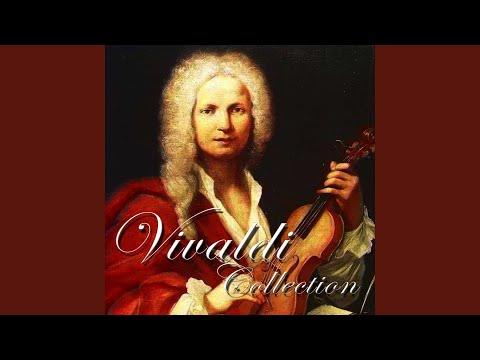 Concerto for Strings & Continuo in C Major, RV 113: III. Allegro