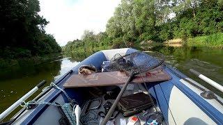 Утопил телефон!! Секрет успешной рыбалки. Рыбалка на спиннинг летом.