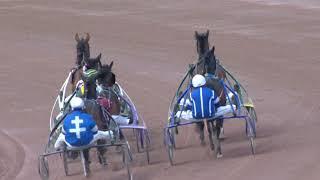 Vidéo de la course PMU PRIX DE LA BROYE