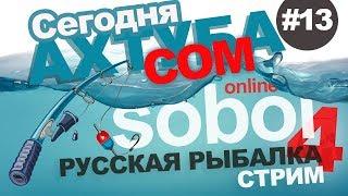 Русская рыбалка 4 - Ловим Сома на Ахтубе. Стрим #13