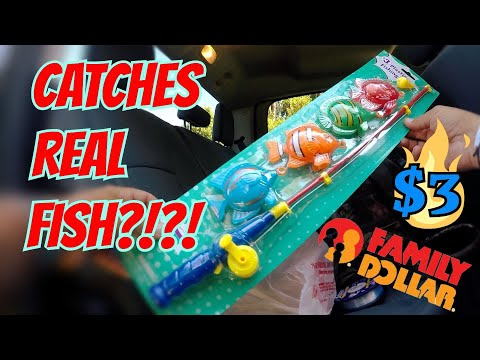 KIDS TOY Fishing Rod CATCHES FISH!! Dollar Store Fishing Challenge!! (SURPRISING!)
