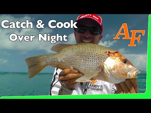 Catch and Cook Overnight fishing trip Andy's Fish Video EP.342