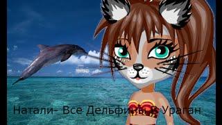 Аватария Натали  Все Дельфины В Ураган