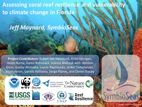 Vulnerability of Florida Reefs to Climate Change - Jeff Maynard
