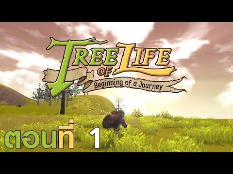 Tree of Life - ตอนที่ 1 : สองหนุ่มเกาหลี | สนับสนุนโดย dks.in.th