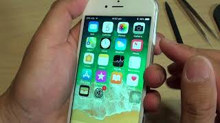 iPhone 6S: Fixing Issue With Random Screen Turn Off / Shutdown (Power Lock Fault)