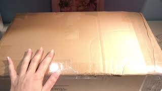 Rapunzel Singing Doll Deluxe *Unboxing*
