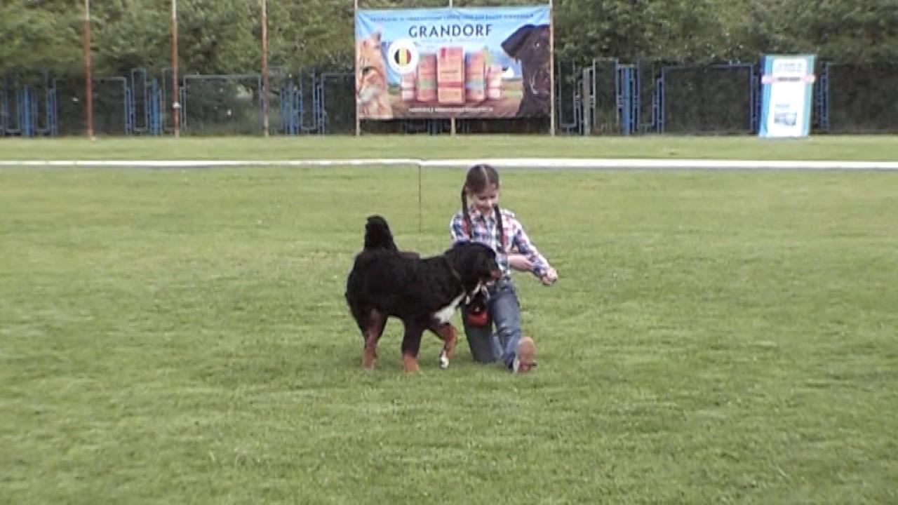 Раппопорт Варвара, класс щеночки - большая перспектива