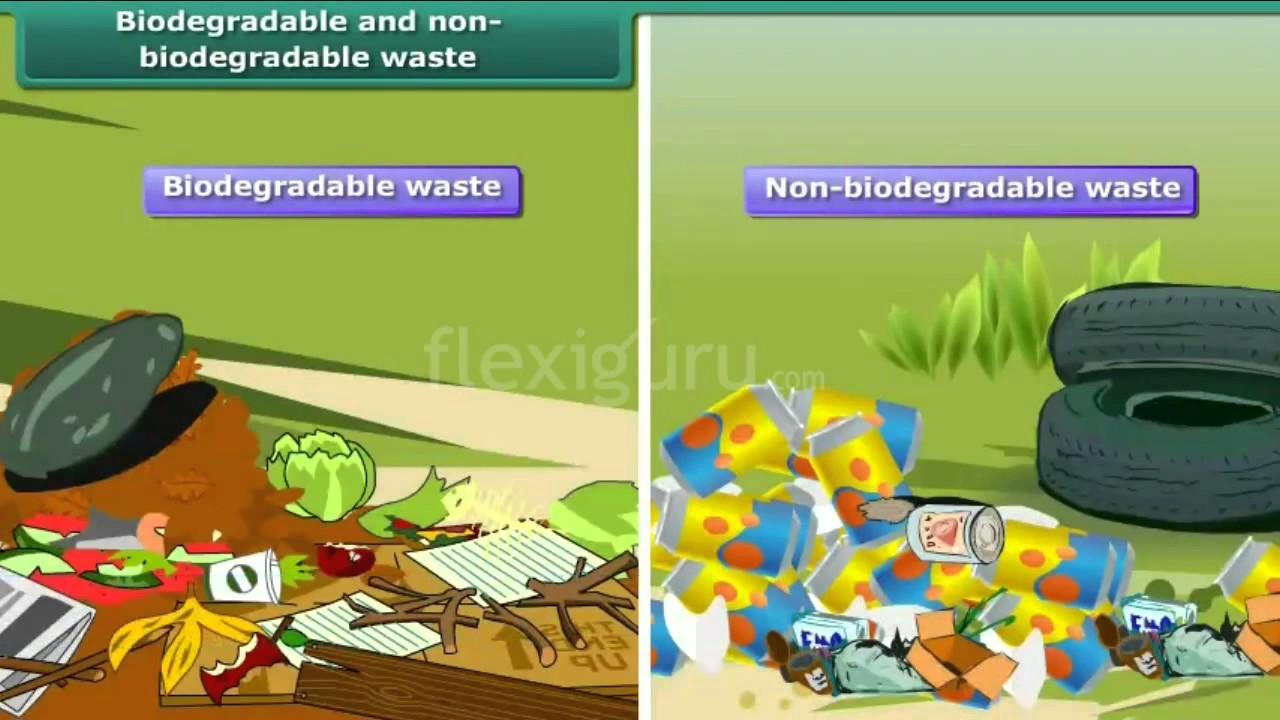 bio and non biodegradable