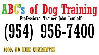 Coral Springs Dog Trainer | Dog Obedience Training