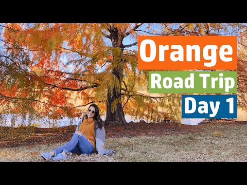 Orange, NSW - Beautiful And Colorful Gardens And Parks - Road Trip Day 1