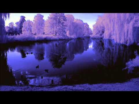 Adult Swim Bump Purple Dream 3 Youtube