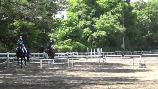 Dressage A2 May 2015 Anzu 乗馬祭にて馬場A2経路に初挑戦。あんず 雑な...