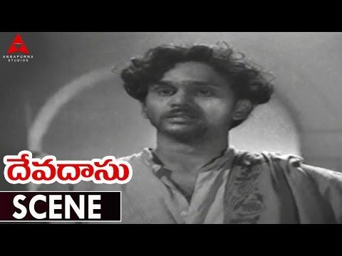 Devadasu Movie || Best Climax Scene || ANR,Savitri