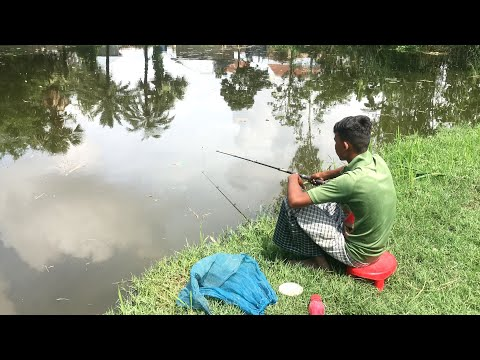 Amazing Fishing Video- Catching Big Catfish Fish Hunting By Hook Traditional Hook Fishing in Village
