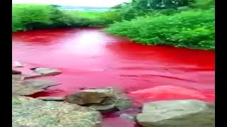 River Mysteriously Turns Blood Red | Rivers Of Blood