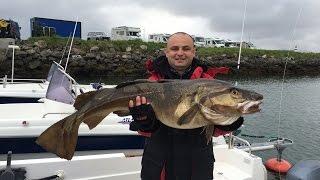 Рыбалка в Норвегии. На Север! (часть вторая). Большая треска. Палтус. Разделочный цех.