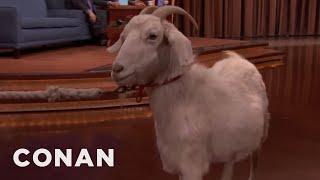 Conan's $750 Goat  - CONAN on TBS