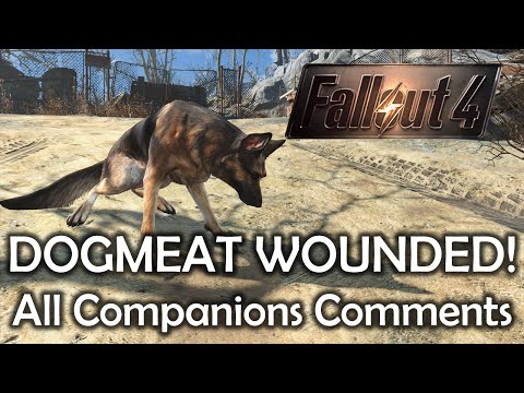 Fallout 4 - Dogmeat wounded - All companions comments