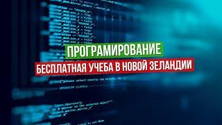 Программирование, бесплатная учеба в Новой Зеландии (Software Development)
