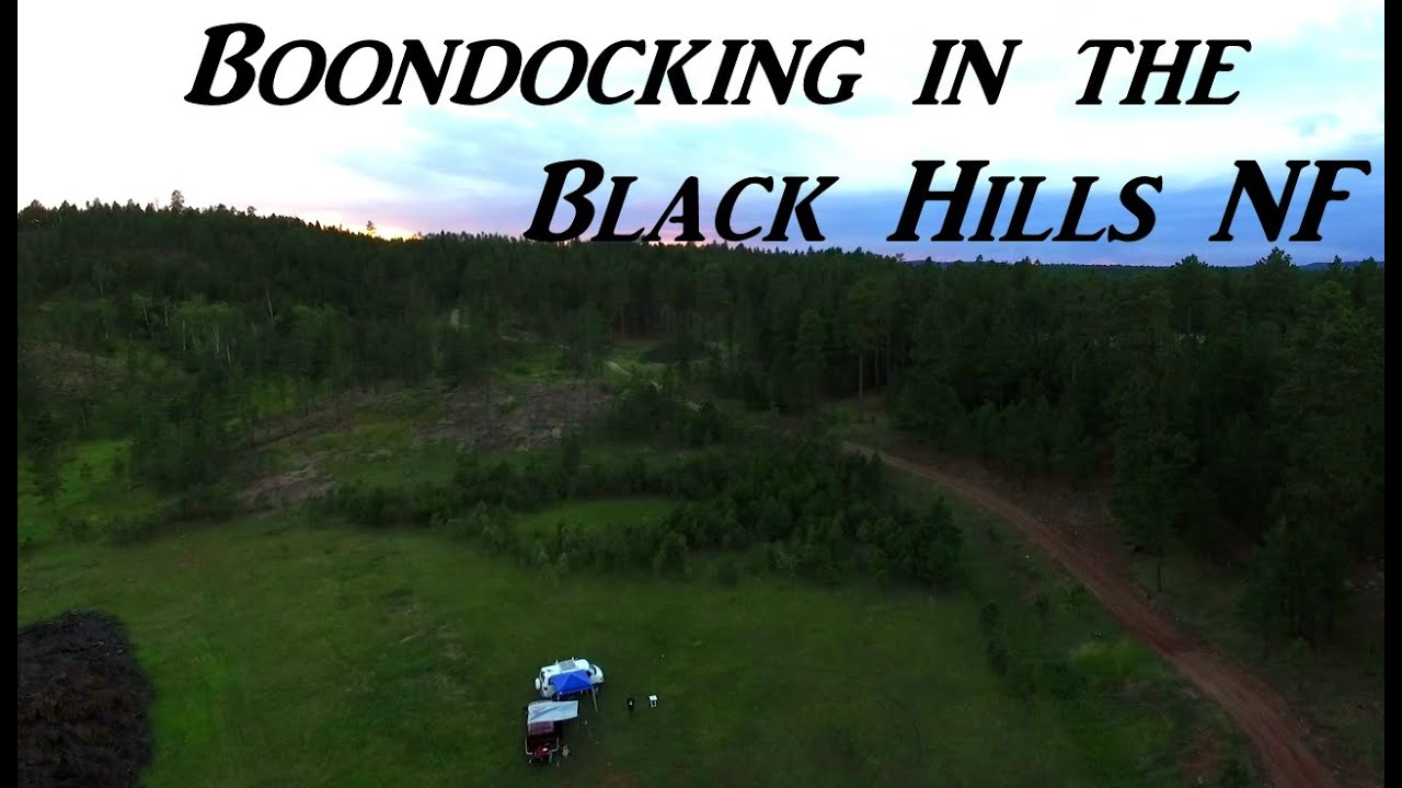 forest dale black personals Press to search craigslist save search options close real estate search titles only has image  (black hills) map hide this posting restore restore this posting.