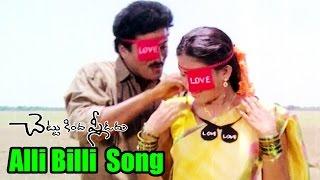 Chettu Kinda Pleader Songs - Alli Billi - Rajendra Prasad, Kinnera