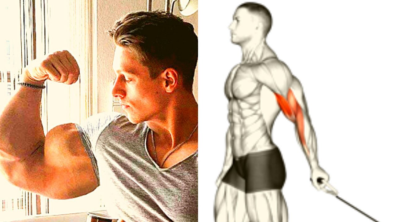 3 BEST BICEPS ISOLATION EXERCISES / musculation biceps avec poulie
