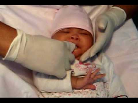 c35f4bb5f Cepillando al recién nacido - YouTube