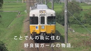 http://www.toenta.co.jp/dvd/neko/index.html ☆篠原ともえ、映画初主演...