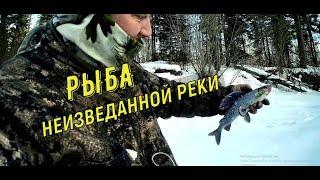 РЫБА НЕИЗВЕДАННОЙ РЕКИ Как мы её нашли Трудовая рыбалка в тайге