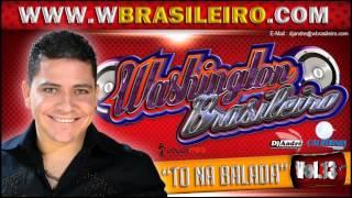 Washington Brasileiro Vol. 13 to na balada