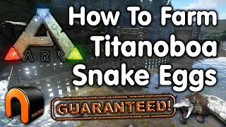 Ark How To Farm Titanoboa Snake Eggs (A Guaranteed Snake Farm!)