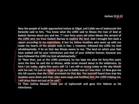 Wholehearted Conviction - Jos 12:6-13