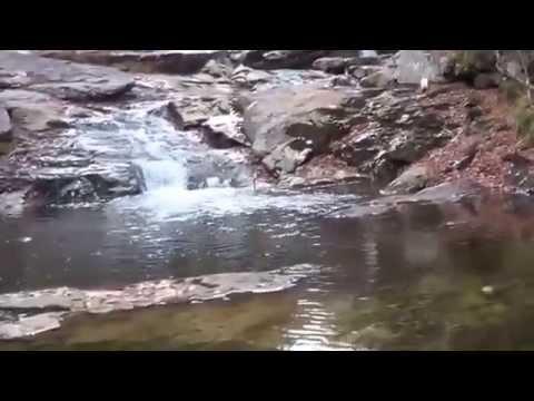Maine Gold Prospecting  Gold Adventures W:Bobby Freedom